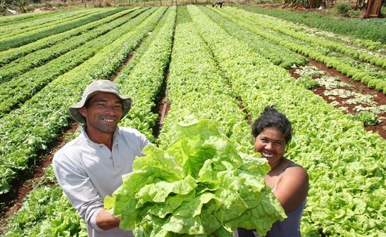 Imagem Ilustrativa: Agricultura Familiar