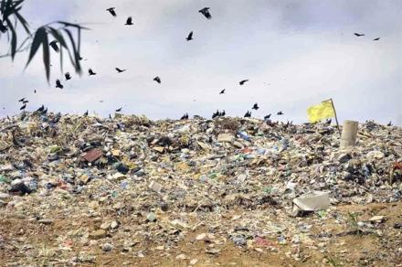 lixo-7